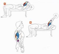 Упражнения на трицепс 1