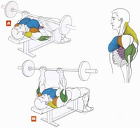 Упражнения на трицепс 3