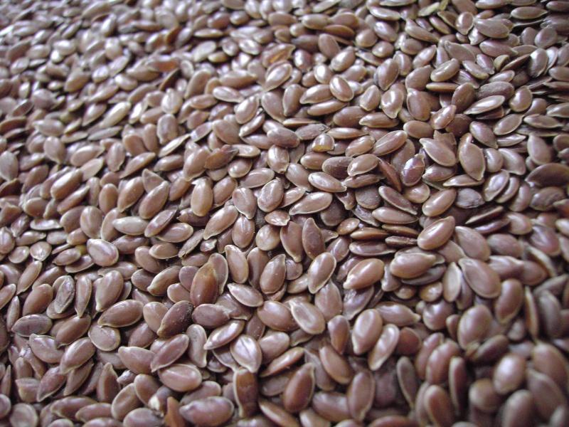 семена льна от паразитов как пить